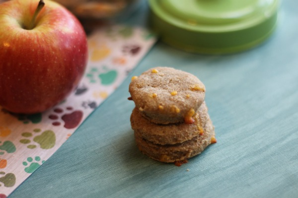 apple and cheddar dog treats