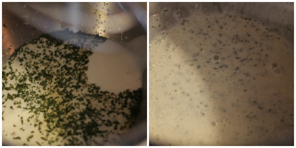 buttermilk ranch dressing mix