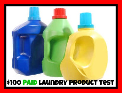 100-paid-laundry-product-test-red-border
