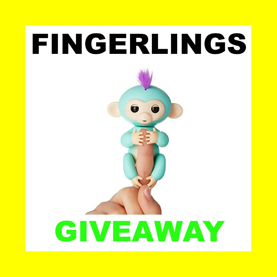 Win fingerlings baby monkeys giveaway coupons and for New home giveaway