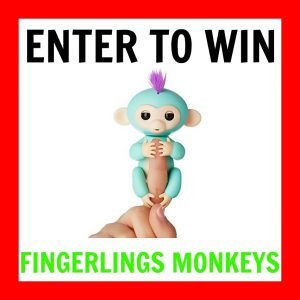 Enter to win Fingerlings giveaway