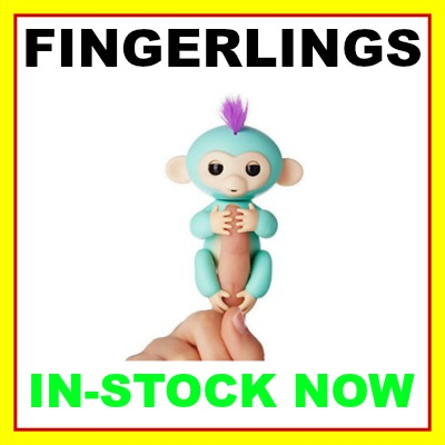 fingerlings baby monkeys in stock