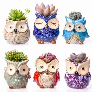 Ceramic Owl Succulent Pots Deal On Amazon